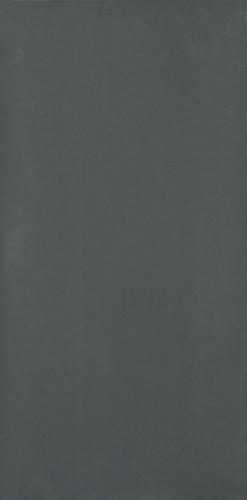 Płytka podłogowa Paradyż Doblo Grafit mat 29,8x59,8