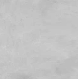 Płytka podłogowa Nowa Gala Negros 59,7x59,7 szary (p)