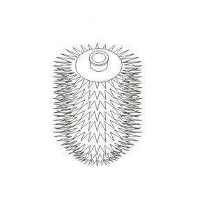 Główka do szczotki wc 07.432 biała Stella Classic 80.009.1