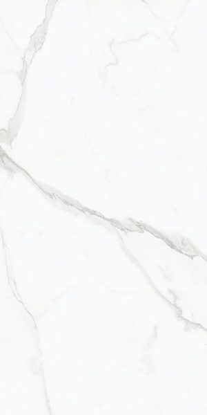 Płytka podłogowa AB Status poler 120x240 cm