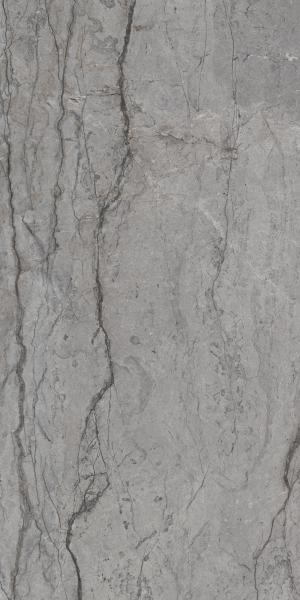 Zdjęcie Płytka  podłogowa Paradyż Visioner Grey Poler 60×120 cm